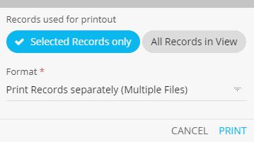 List Print Options